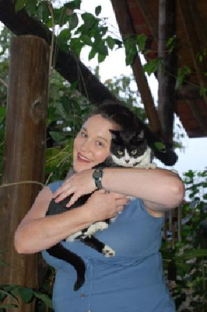 Hotel Pousada Guarana: one of their sweet kitties