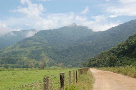 Pousada Bromelias: road to hotel