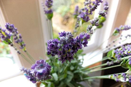 Lavender House: ウェイティングルームのラベンダー