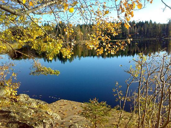 Autum in Midle Finland