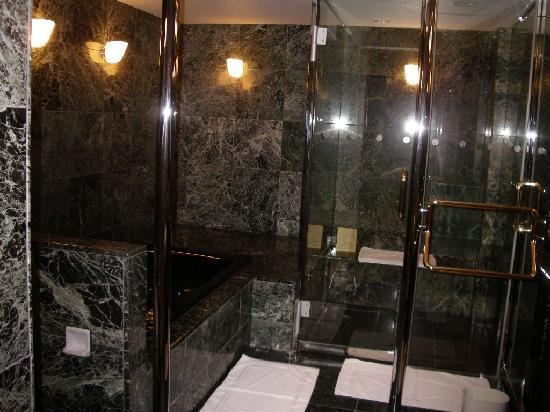 Meguro Gajoen: 浴槽&スチームサウナです。