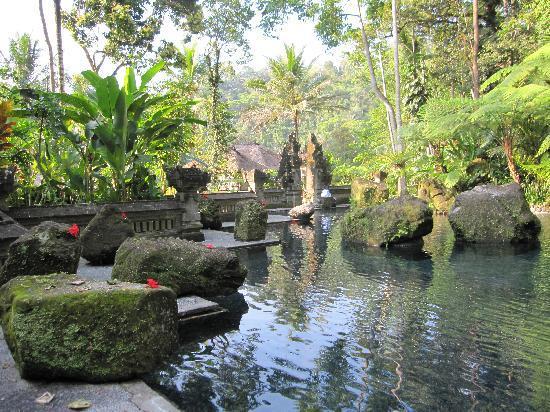 The Royal Pita Maha: la piscine d'eau douce dans le fond de la vallée