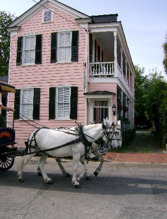 Palmer's Pinckney Inn: take a carriage ride when you visit us