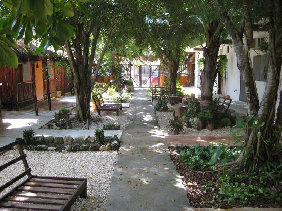 Secret Garden Hotel: the garden