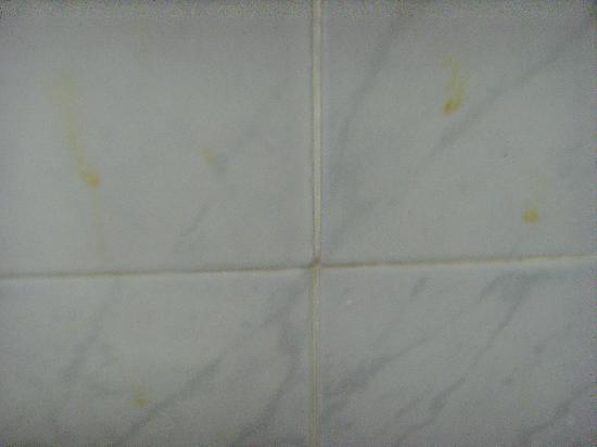 Damon Hotel Apartments: Bathroom Tiles