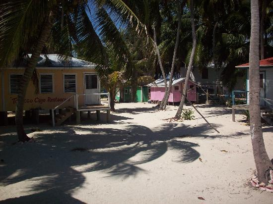 Tobacco Caye Lodge: Restaurant