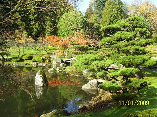 Etonnant Seattle Japanese Garden: Japanese Garden