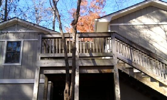 Pineville, KY: Back of the Cabin - where the deer roam