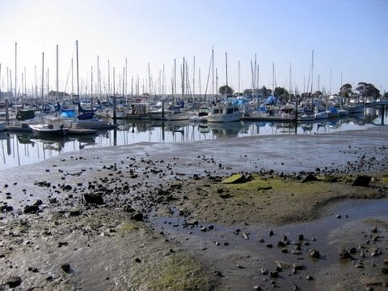 Things to Do in Emeryville, California: See TripAdvisor's , traveller reviews and photos of Emeryville attractions.