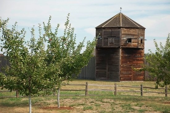 Fort Vancouver National Historic Site: New apple tree.