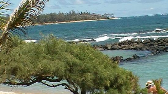 Poipu Beach Park Photo