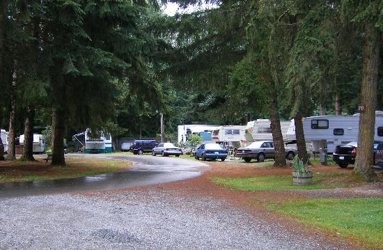 Riverside Resort & Campground: the many campers