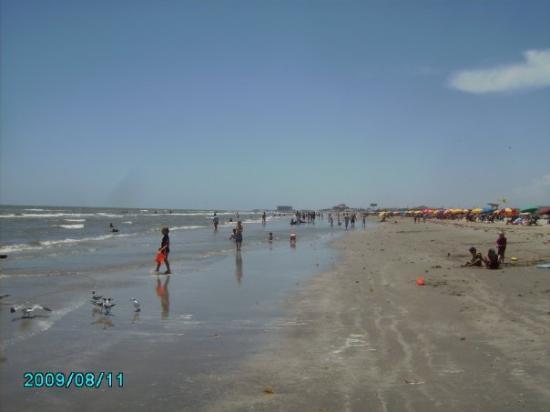Stewart Beach Galveston Restaurants