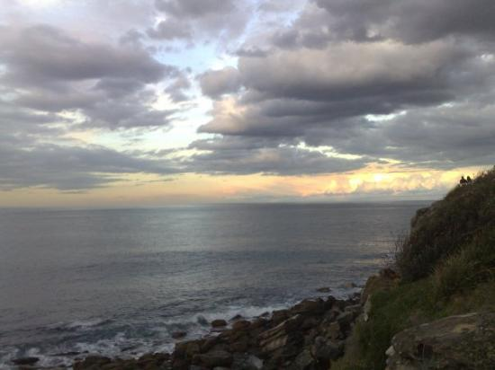 Manly Beach: Cliff side sunset