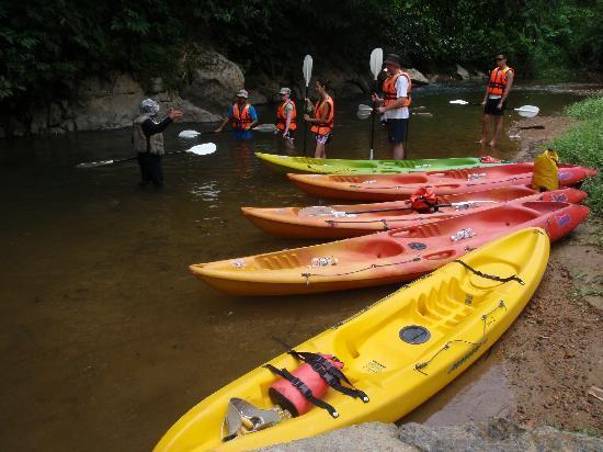 The LimeTree Hotel: great day of kayaking - must do! rainforestkayaking.com!!!