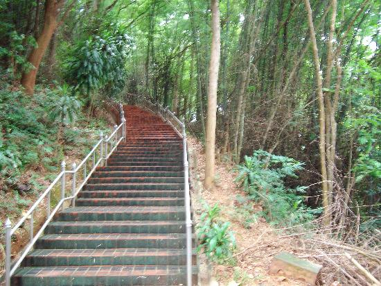 Chiang Saen - the old city walls : Chiang Saen Hill Steps To Abbot Residence