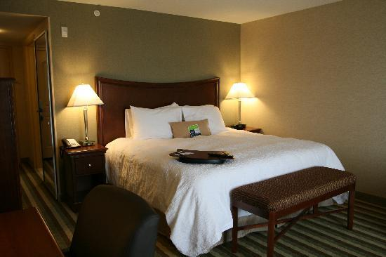 Hampton Inn by Hilton Presque Isle: Spacious King Study Guest Room
