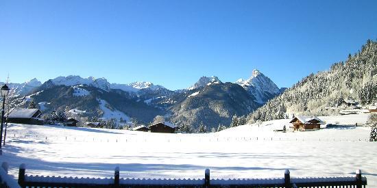 Hotel Alpenrose: panorama davanti all'hotel