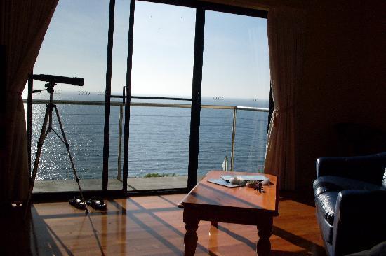 Clifftop Accommodation: amazing views!