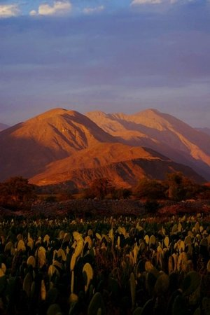 Nazca, Peru: The sun sets over the mountain and cacti at the site of the Aquaducts