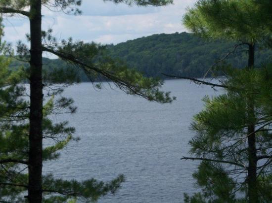 Kawartha Lakes, Canada: Pretty view from the deck