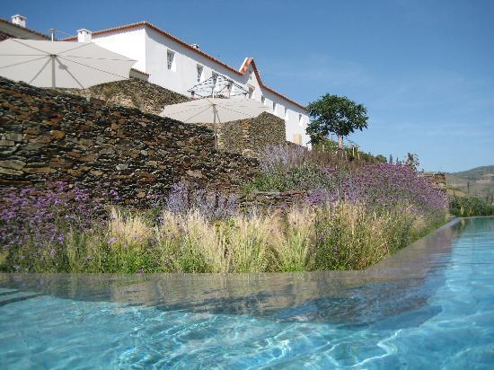 Romaneira - Quinta dos Sonhos : The Pool