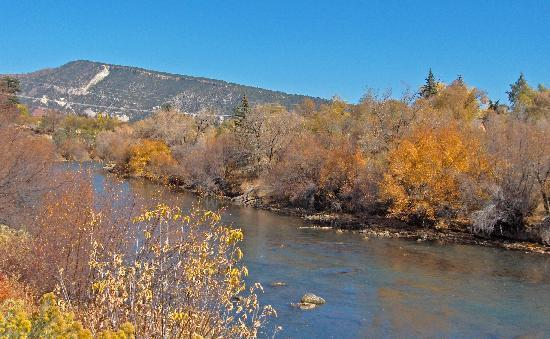 Country Sunshine Bed and Breakfast : Animas river from the train.