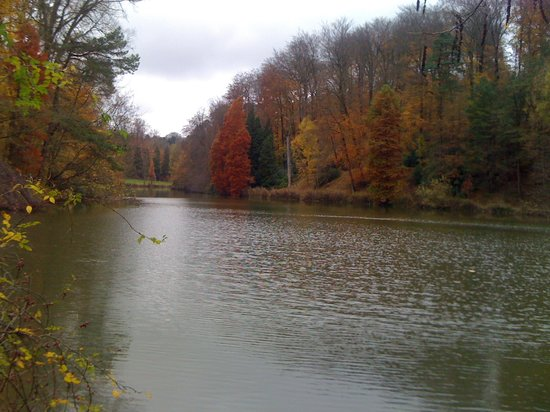 La Hulpe, Belgien: The lake near The Castle