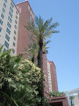 Hilton Grand Vacations at the Flamingo: Le Hilton Grand Vacation Club