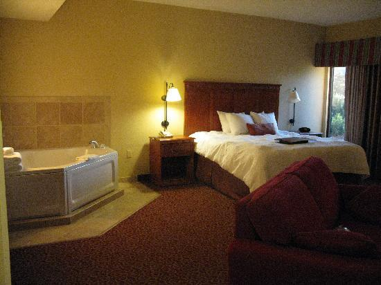 Hampton Inn Sevierville: our room    2
