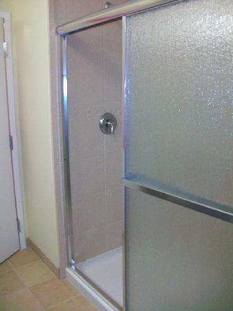 Hampton Inn & Suites Plattsburgh : walk in shower/no tub