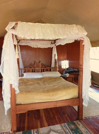 Mara Leisure Camp : la tente Jambo 5