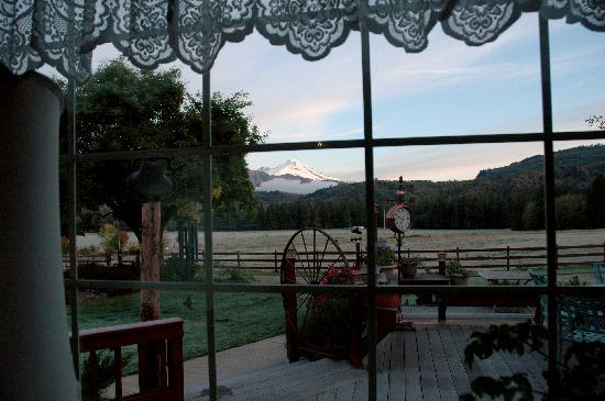 Ovenell's Heritage Inn: View of Mount Baker from Ovenell's on a frosty October morning