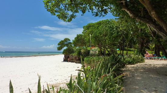 The Baobab - Baobab Beach Resort & Spa: vue de la plage depuis le parc