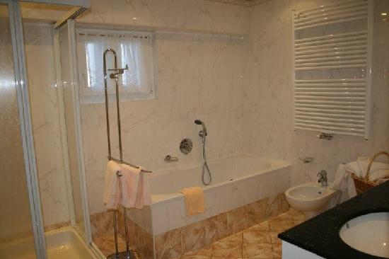 Excelsior Dolomites Life Resort: bagno