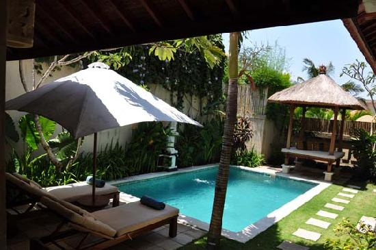 Asri Jewel Villas & Spa: our own pool