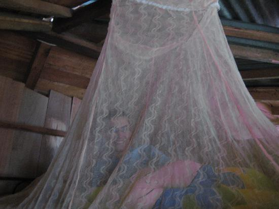 La Casa de Cecilia: The mosquito nets that protected us
