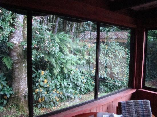 Hotel Chalet Tirol: room view