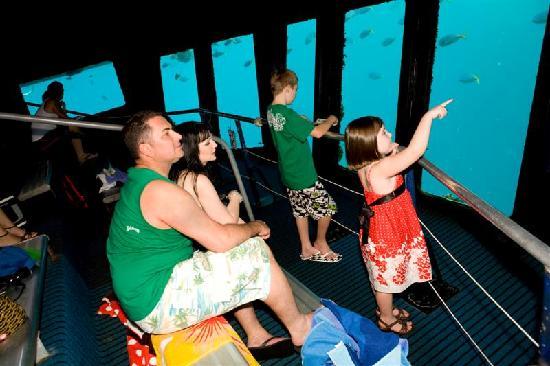Fantasea Adventure Cruising Reefworld: Reefworld underwater observatory