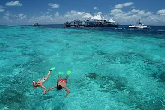 Fantasea Adventure Cruising Reefworld: Reefworld snorkelling on the Great Barrier Reef