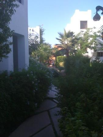 Delta Sharm Resort: Delta Sharm