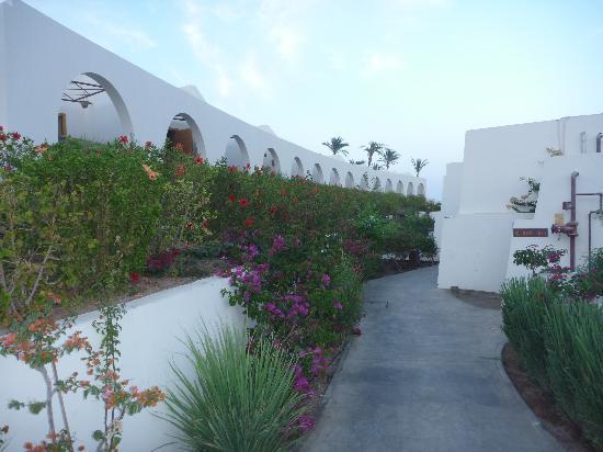 Le Meridien Dahab Resort: vue des allées vers les chambres supérieures