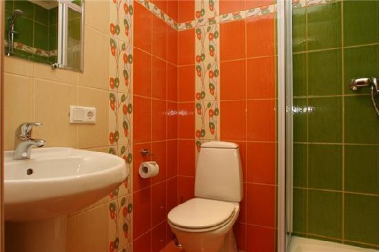 Acme Hotel on Malaya Morskaya: standard room bathroom