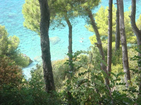 Santavenere Hotel : sea
