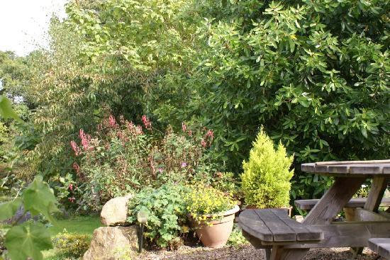 Lismore, Ireland: Picnic Area. S garden