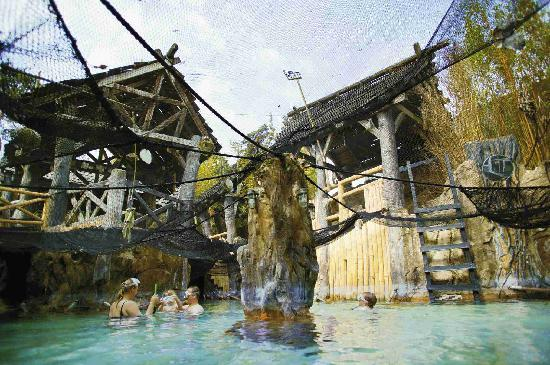 Peer, بلجيكا: Center Parcs Erperheide Aqua Mundo