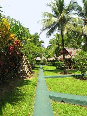 Coco Loco Lodge: Bungalows