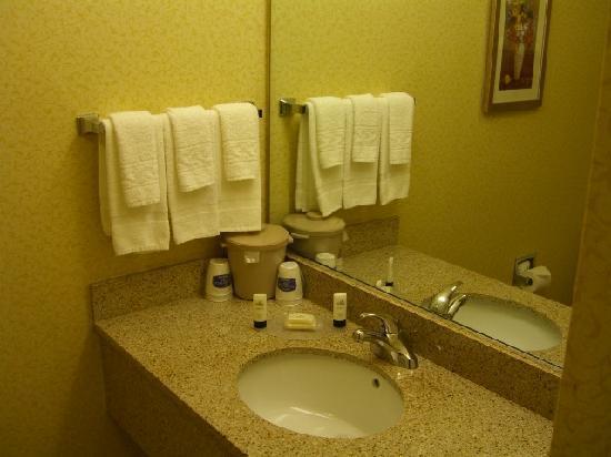 Fairfield Inn & Suites Richmond Short Pump/I-64: Bath