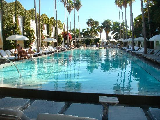 Delano South Beach Hotel Cool Pool