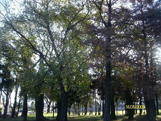Santa Fe, Argentina: BOTANICAL GARDENS